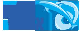 משחה דולפין אשדוד 2020